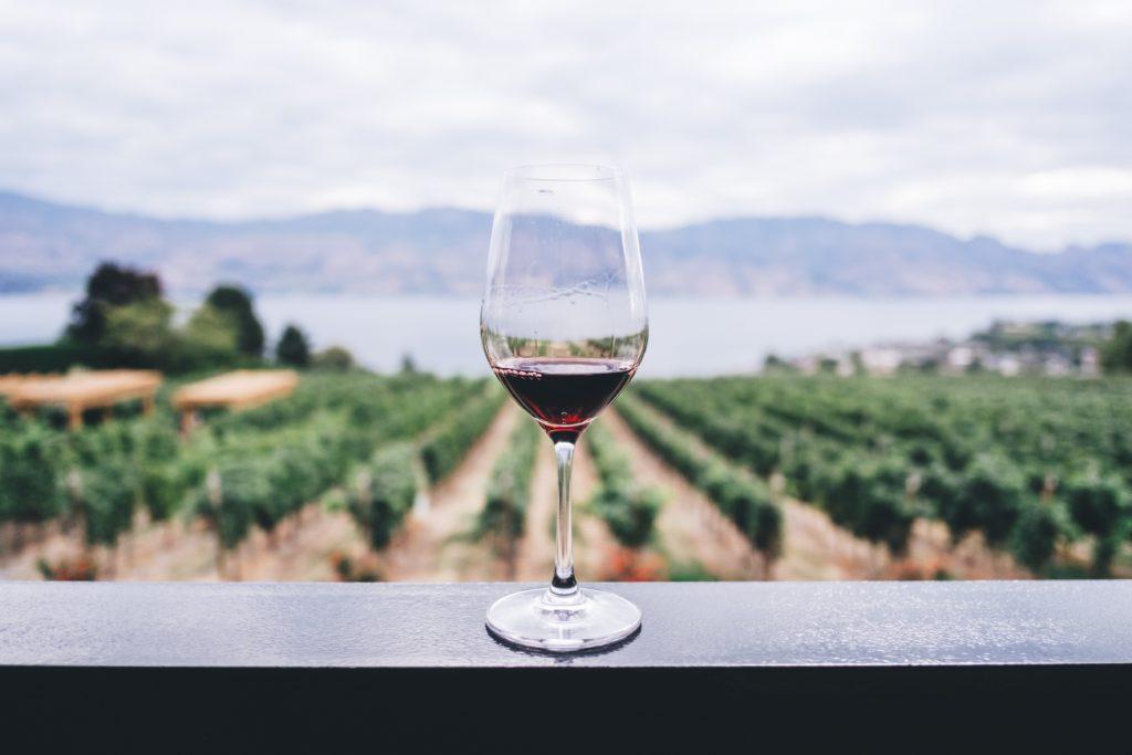 Event for vinsmaking: Hver drue har unike egenskaper.